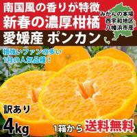 新春の柑橘、ポンカン。 南国風の香りと甘くて濃い味が特徴のかんきつです。  外皮も剥きやすく、内皮も...