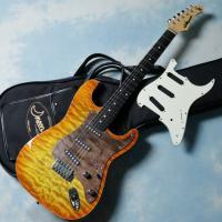 ※写真のギター本体、ギターケースは商品には含まれません。ギターのルックスを決める一つの要素がピックガ...