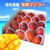 宮古島産完熟マンゴーを産地直送いたします。 色ムラやキズなどのある、訳ありマンゴーとなりますが、 ご...