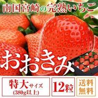 いちご  特大サイズ 12粒 380g以上(1粒あたり30〜39g) イチゴ 苺 大粒 高級 超大きくて甘い おおきみ 送料無料 ギフト プレゼント 1月中旬以降順次発送予定