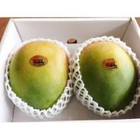 ●宮古島のキーツマンゴーを産地直送でお届けします1  ※『優品』は人気が高く品薄気味です。ご注文はお...