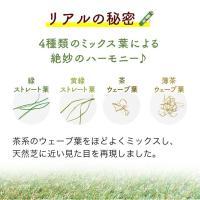 人工芝 【U字ピン6本付き】 リアルMJターフ [1m×3m 芝丈20mm] ロール 天然芝にそっくり。