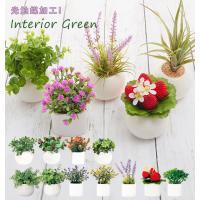 光触媒観葉植物 おしゃれ 通販 観葉植物 光触媒 フェイク 小さい 枯れない 造花 フェイクグリーン リアル インテリアグリーン ミニ 小さめ コンパクト