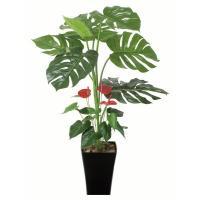 ■光触媒観葉植物(人工植物) モンステラ&アンスリューム95cmは、お部屋のアクセントや空間に彩りを...