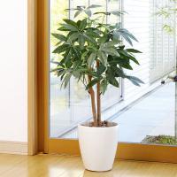 ■人工観葉植物(光触媒加工)光の楽園 パキラ90cmは、お部屋のアクセントや空間に彩りを添え、空気を...