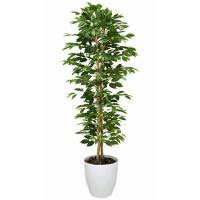 光触媒人工観葉植物 ベンジャミンスリム 1.8m