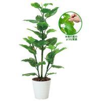 光の楽園(光触媒人工観葉植物) フレッシュポトス1.5m