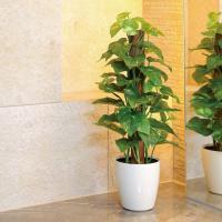■人工観葉植物テーブルタイプ(光触媒加工の観葉植物)フレッシュポールポトスは、「まるで本物のような印...