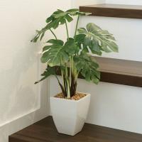 ■人工観葉植物テーブルタイプ(光触媒加工) モンステラポットは、お部屋のアクセントや空間に彩りを添え...