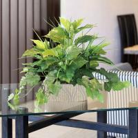 光触媒人工観葉植物 光の楽園 フレッシュミックス