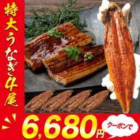 今だけ半額!特大うなぎ蒲焼き880g (4尾セット) ウナギ 鰻 タレ付 4本 送料無料 中国産 ギフト 父の日 お取り寄せグルメ