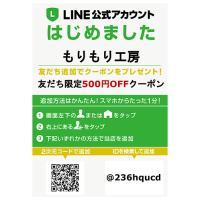 トミカケース6×8マス(最大96台収納可能)/高さ40cm 幅52cm 奥行 10cm/新品