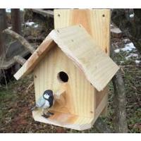 巣穴のサイズ28mm。シジュウカラ用です。巣箱もコンパクトサイズとなっております。無塗装仕上げの商品...