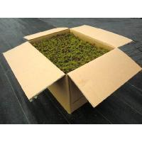 苔 杉苔並品8枚入り(約0.8平米)
