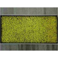 苔マットシリーズは苗箱で栽培された厚さ約10mmの一枚シート状の苔です。<br>だれでも...