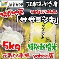 令和元年産 通販 ササニシキ 宮城県産 5Kg 特別栽培米(減農薬・減化学肥料) 特A地区 ささにしき 一等米 送料無料(一部地域を除く)|ms-genki