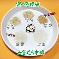 新米 令和2年産 通販 ササニシキ 宮城県産 10Kg 特別栽培米(減農薬・減化学肥料) ささにしき 一等米 精米 送料無料(一部地域を除く) ms-genki 02