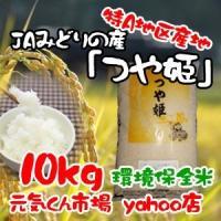 28年産 新米 米 通販 つや姫 宮城県産 10kg 特A地区 特別栽培米(減農薬・減化学肥料) つやひめ 精米 一等米 送料無料(一部地域を除く)|ms-genki