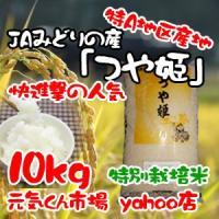 29年産 新米 米 通販 つや姫 宮城県産 10kg 特A地区 特別栽培米(減農薬・減化学肥料) つやひめ 精米 一等米 送料無料(一部地域を除く)|ms-genki
