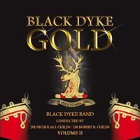 ブラック・ダイク・ゴールド Vol. 3 | ブラック・ダイク・バンド  ( CD )|msjp