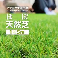 人工芝 ロール 1m×5m 芝丈35mm 高耐久 リアル人工芝 芝ロール