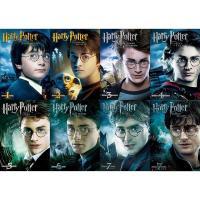 「ハリー・ポッター」シリーズ全8作品全てのDVD 発売日 2015年11月18日 数量限定、8枚組セ...