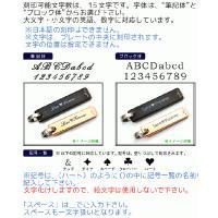 名入れ無料 オリジナルメッセージ刻印 ステンレス 切替プレート ペアネックレス n-style 02