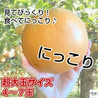 〔にっこり梨とは?〕 「新高」に「豊水」を交配して生まれた実生から選抜育成された赤梨の品種です。  ...