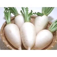 ご覧頂き有難うございます♪  埼玉県加須市の有機栽培農家『遠藤農園』より、手塩にかけて育てた『無農薬...