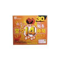 製品名: 春魔人 貼るカイロ レギュラー 型番:: KI0221 JANコード: 495652501...