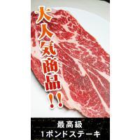 アメリカ産の牛ロース肉! 十分な食べ応えの1枚450g!! 肉質も、アメリカ産では、最高級グレード(...
