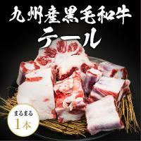 九州産黒毛和牛のテール1本!大きさは1.3kg以上の物をお送りします。 通常、牛テールは長時間、煮込...