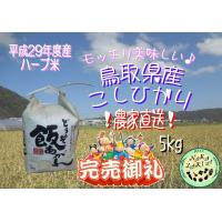 新米出来ました♪ 平成29年度産 鳥取県産 ハーブ米 コシヒカリ 5kg  不動滝の清流で育った、美...