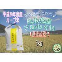 平成29年度産 鳥取県産 ハーブ米 きぬむすめ 5kg×1袋  不動滝の清流で育った、美味しいお米で...