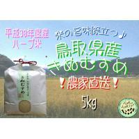 平成30年度産 鳥取県産 ハーブ米 きぬむすめ 5kg×1袋  不動滝の清流で育った、美味しいお米で...