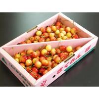 フルーツ王国 山形県より 今年も甘くて美味しい佐藤錦さくらんぼが入荷しました。まさに、今が旬の佐藤錦...