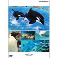 自宅に水族館がやってくる!  壮大な自然の旅を体感できる名古屋港水族館の魅力を徹底的に紹介。 さあ、...