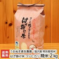 一粒一粒に旨みあり!全国でも珍しい自然天日乾燥によるはざ掛け米!海外からも注文が来る大人気商品です!...