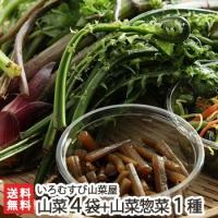 おこわや天ぷらなどアレンジ様々!旬の山菜たちや、フキノトウ味噌などの手作り山菜料理をセットでお届けし...