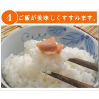 塩引き鮭 辛塩4切 天然 新潟たけうち 原料 北海道産|niigatatakeuchi|05