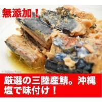 ■ 商品名 三陸産 鯖水煮 20缶セット ■ 内容量 190g x 20 ■ 原材料名 さば、食塩 ...