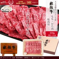 父の日 プレゼント ギフト 肉 牛肉 焼肉 飛騨牛 もも・かた肉 350g 約2〜3人 化粧入 送料無料 御祝 内祝 御礼