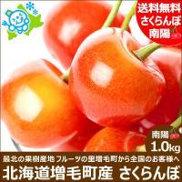 次回出荷予定は2017年7月下旬 お中元時期に最盛期を迎える北海道産さくらんぼ。 さくらんぼが嫌う雨...