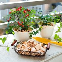 ひのきには日本人が好む特別な芳香があり、また高級木材の代名詞でもあります。高木林業(有)のひのきウッ...