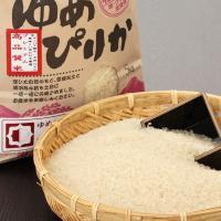 【程よい粘りと豊かな甘み。ご馳走級のお米】プレミアムゆめぴりかは、北海道米で初めて特Aを獲得したお米...