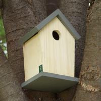 木目を活かしたナチュラルなお家が魅力的のバードハウス。 凝った装飾もなくシンプルな作りなので場所を選...