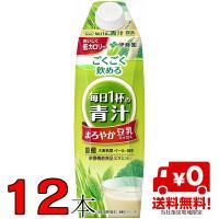 伊藤園 豆乳でまろやか毎日1杯の青汁 1L(1000ml) 紙パック 2ケース(6本入×2箱)12本 屋根型キャップ付容器