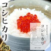 新米 コシヒカリ 5kg 送料無料 お米 米 無洗米 白米 玄米 減農薬 おこめ コメ 栃木 30年産 こしひかり あすつく