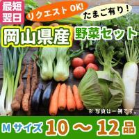【名称】西日本 岡山県産 野菜セットMサイズ 【内容】旬のお野菜を10〜12品お入れいたします。  ...
