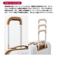 キャリーケース スーツケース MAX SMART MS-202-18/機内持ち込み可能サイズ/1〜2泊用/ハードケース/レディース/TSAロック/送料無料/